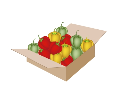 commercial kitchen: Fresh Fruits, An Illustration of Various Fresh Bell Peppers in Red, Green and Yellow Colors in A Cardboard Box, Ready for Shipping or Delivery.   Illustration