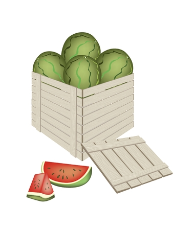 uncooked: Fresh Fruits, An Illustration of Fresh Red Watermelon and Slice of Watermelons in Wooden Crate or Cargo Box, Ready for Shipping or Delivery.  Illustration
