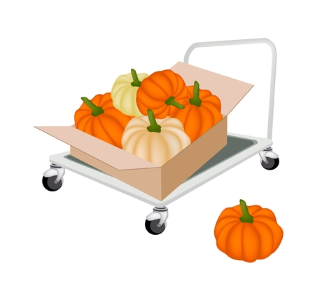 dolly: Hand Truck or Dolly Loading Cardboard Box Full with Fresh Pumpkins, Ready for Shipping or Delivery.    Illustration
