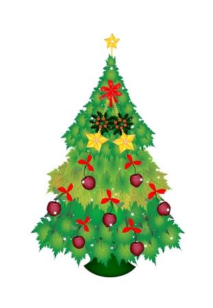 eden: Weihnachtsbaum von Green Ahornbl�tter mit sch�nen Apfel-, Stern-Verzierungen und Red Ribbon mit Golden Star Weihnachtsbaumspitze verziert, Zeichen f�r Weihnachtsfeier.