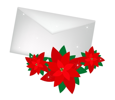 Beautiful Red Poinsettia Plants with A Christmas Letter or Envelopes For Christmas Celebration, Isolated on White Background.