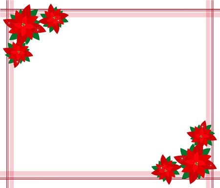 Beautiful Christmas Flowers or Red Poinsettia Plants Decorated on Christmas Border with Copy Space for Text Decorated.  Vector