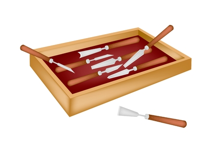 timber cutting: A Collection of Carving Tools Used To Cut and Sculpt A Piece of Wood or Stone, For Create A Sculpture in A Beautiful Wooden Storage Box.  Illustration