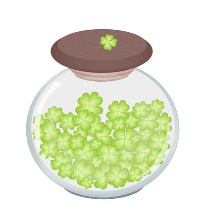 cloverleafes: Simboli per la fortuna e la fortuna, illustrazione vettoriale di Fresh Four Leaf Clover piante o Shamrock in un barattolo di vetro per St. Patricks Day Celebration.