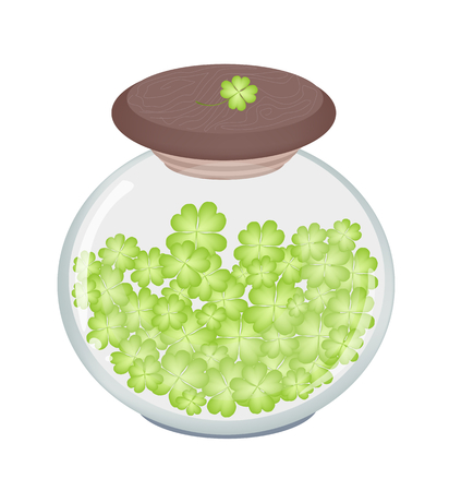 cloverleafes: Symbols for Fortune and Luck, Vector Illustration of Fresh Four Leaf Clover Plants or Shamrock in A Glass Jar for St. Patricks Day Celebration.
