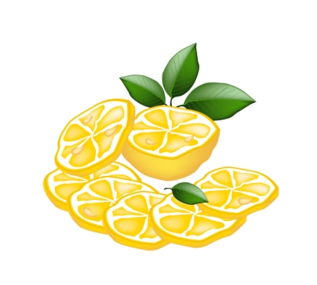 Vegetable and Herb, Vector Illustration of A Half and Sliced of Ripe Lemons Isolated on White Background.  Vector