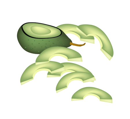 avocados: Vector Illustration of Delicious Fresh Half Avocado and Sliced Avocados Isolated on White Background.