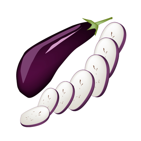 Vegetable, Vector Illustration of Whole and Slided Eggplant Isolated on White Background.  Vector