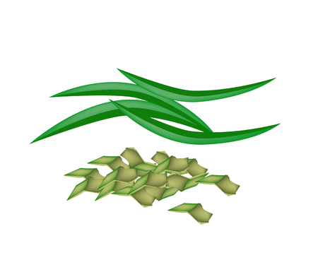 flavoring: Vegetable and Herb, Vector Illustration of Fresh Green Pandan Leaves with Chopped Pandan Leaves Used in Southeast Asian Cooking as A Flavoring.    Illustration