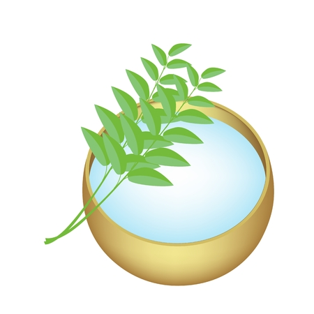 holy leaves: Vector Illustration of A Holy Water in A Golden Bowl with Green Leaves Isolated on White Background.