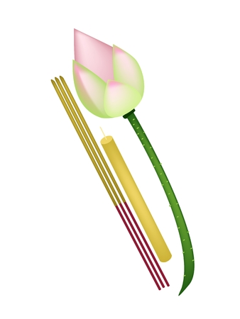 An Illustration of A Pink Lotus Flower or Water Lily with Candle and Incense Sticks Isolated on White Background.
