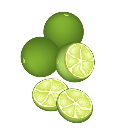 citrus tree: Vegetales y hierbas, una ilustraci�n de un delicioso dulce y madura Limes con jugosa rebanada de Limes aislados sobre fondo blanco.