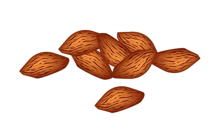 dietary fiber: A Pile of Shelled Almonds Isolated on White Background, Good Source of Dietary Fiber, Vitamins and Minerals.