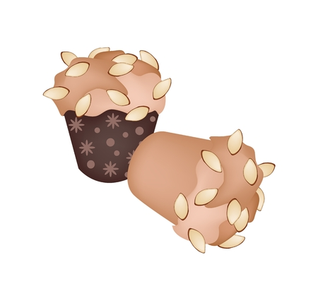 Snack and Dessert, Delicious Homemade Cupcake Muffin with Almonds Isolated on White Background.  Vector