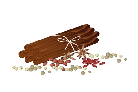 Vegetable and Herb, A Pile of Dried Star Anise, with Cinnamon Sticks and Peppercorns Used for Seasoning in Cooking.  Vector