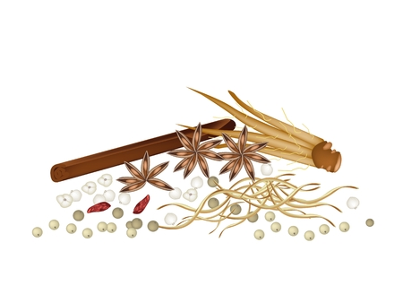cinnamon sticks: Vegetable and Herb, A Pile of Dried Star Anise, Siamese Cardamom, Fingerroot with Cinnamon Sticks and Peppercorns Used for Seasoning in Cooking.