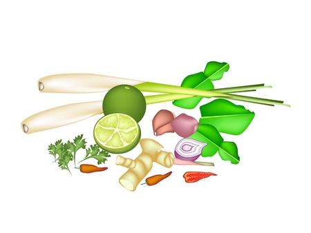 lemon grass: Vegetable and Herb, An Illustration of A Delicious Fresh Lime, Shallot, Kaffir Lime, Chili Pepper, Lemon Grass, Blue Ginger, Coriander Used for Seasoning in Thai Food.
