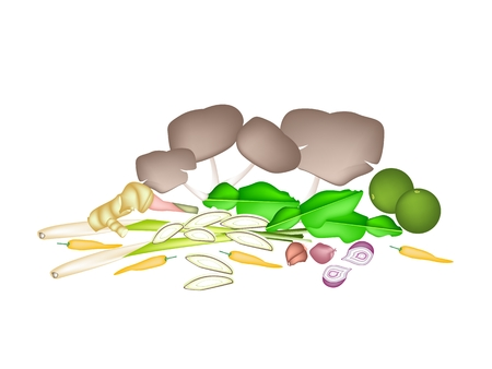 Vegetable and Herb, An Illustration of A Delicious Fresh Lime, Shallot, Kaffir Lime, Chili Pepper, Lemon Grass, Blue Ginger and Mushrooms Used for Ingredient in Tom Yum Soup.  Vector