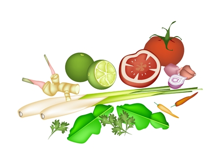 Vegetable and Herb, An Illustration of A Delicious Fresh Lime, Shallot, Kaffir Lime, Chili Pepper, Lemon Grass, Blue Ginger and Tomatoes Used for Seasoning in Tom Yum Soup.  Vector