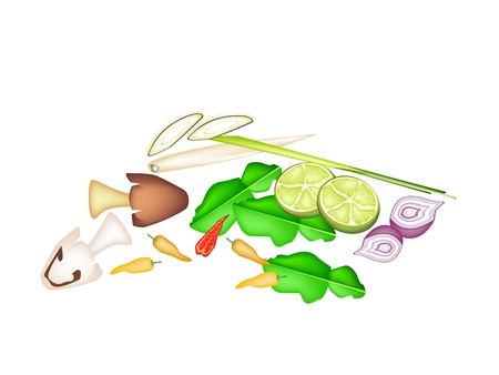 Vegetable and Herb, An Illustration of Lime, Shallot, Kaffir Leaves, Chili Pepper, Lemon Grass, Blue Ginger and Mushrooms Used for Ingredient in Tom Yum Soup.  Vector