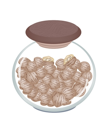 dietary fiber: Illustration of Shelled and Unshelled Walnuts in Glass Jar, Good Source of Dietary Fiber, Vitamins and Minerals.