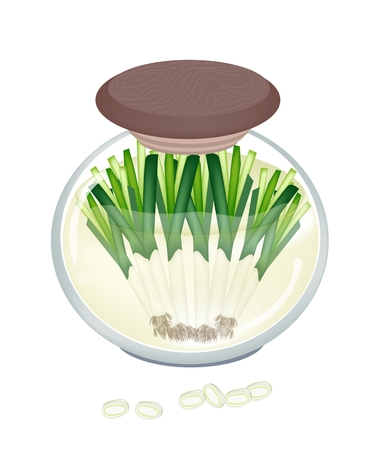 ramps: Vegetable and Herb, Illustration of Delicious Pickled Leeks or Ramps in Brine of Vinegar and Sugar in A Glass Jar Isolated on White Background.