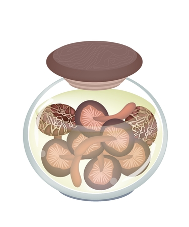 Vegetable, Illustration of Marinated Shiitake Mushrooms or Preserved Lentinula Edodes Mushrooms in A Glass Jar Isolated on White Background.  Vector