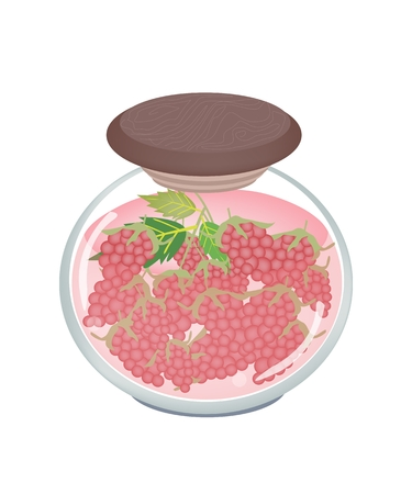 preserved: Fruit, An Illustration of Preserved Raspberries, Raspberry Jam or Raspberries Compote in Syrup of Water and Sugar in Glass Jar Isolated on White Background.