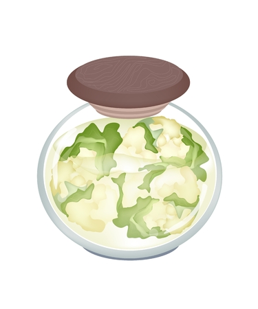 brassica: Vegetable, An Illustration of Pickled White Cauliflower in Brine of Vinegar and Salt in A Glass Jar Isolated on White Background.
