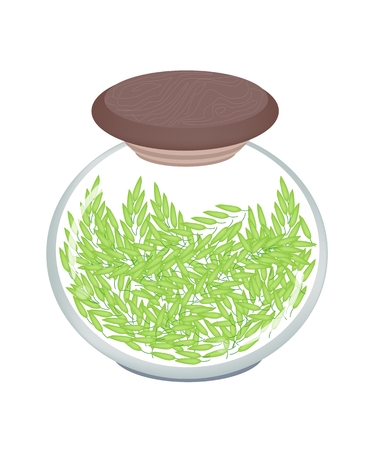 Vegetable, An Illustration of Fresh Unripe Rice in A Glass Jar, Good Source of Vegetable Protein.  Vector