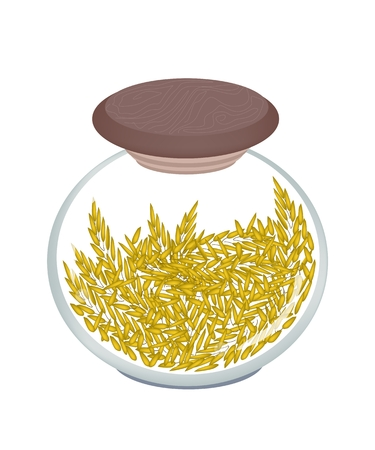 jasmine rice: Vegetable, An Illustration of Fresh Ripe Rice in A Glass Jar, Good Source of Vegetable Protein.