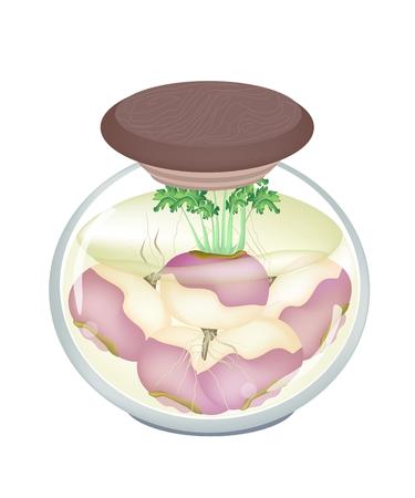 rzepa: Ilustracja Marynowany Purpurowy Rzepa w ocet, cukier, sól i Przyprawa w szklanym słoiku. Ilustracja