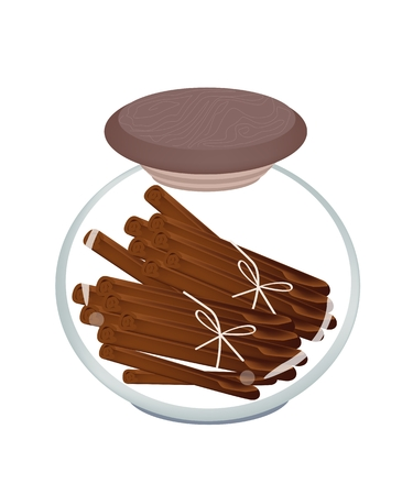 cinnamon sticks: Vegetable and Herb, Illustration of Bundle of Dried Cinnamon Sticks in Glass Jar, Used for Seasoning in Cooking.  Illustration