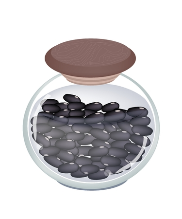 Delicious Preserved Black Beans in A Glass Jar, Good Source of Dietary Fiber, Vitamins and Minerals  Vector