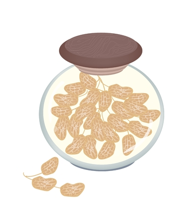 dietary fiber: Dried Peanuts with Shells in A Glass Jar, Good Source of Dietary Fiber, Vitamins and Minerals  Illustration