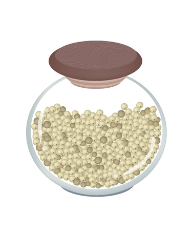 Vegetable and Herb, An Illustration Dried Peppercorns in A Glass Jar Used for Seasoning in Cooking.  Vector