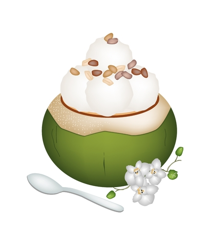 topped: Sweet Food and Dessert, An Illustration of Coconut Ice Cream in Coconut Shell and Topped with Roasted Peanuts.  Illustration