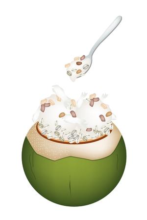 甘い食べ物: 甘い食べ物やデザート、ココナッツの殻にココナッツ アイス クリームのイラストとジョブ涙中国パール大麦やはと麦ロースト ピーナッツをトッピングします。  イラスト・ベクター素材
