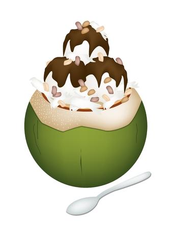 甘い食べ物: 甘い食べ物やデザート、ココナッツの殻にココナッツ アイス クリームのイラストとチョコレート シロップとロースト ピーナッツをトッピングします。
