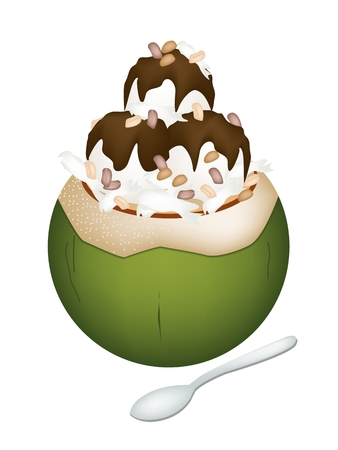 Sweet Food and Dessert, An Illustration of Coconut Ice Cream in Coconut Shell and Topped with Roasted Peanuts and Chocolate Syrup.  Vector