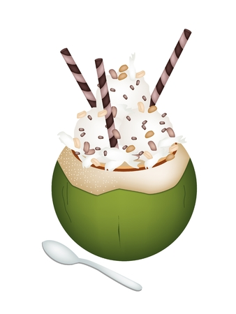 Sweet Food and Dessert, An Illustration of Coconut Ice Cream in Coconut Shell and Topped with Roasted Peanuts and Wafer Rolls.  Vector