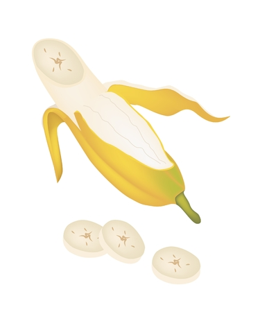 Fruit, An Illustration of Open Wild Banana, Asian Banana or Cultivated Banana Isolated on A White Background.  Vector