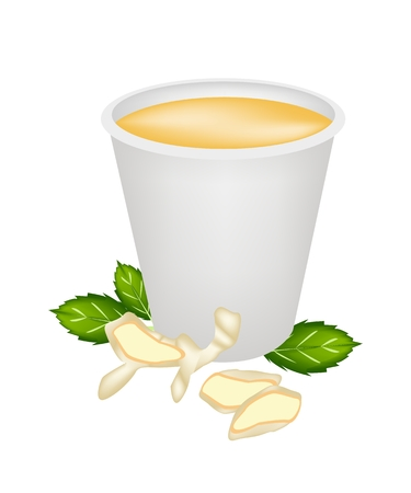 Food and Beverage, Ginger Tea with Fresh Ginger and Herb in A Disposable Cup Isolated on A White Background  Vector