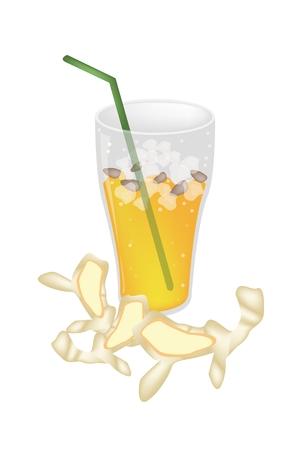 chinese tea cup: Alimentos y Bebidas, Un ejemplo de Iced t� de jengibre con ra�z de jengibre, una bebida muy nutritiva y refrescante. Vectores