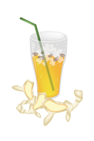 ginger root: Food and Beverage, An Illustration of Iced Ginger Tea with Ginger Root, A Highly Nutritious and Refreshing Drink.