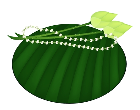 Beautidul Flower, An Illustration of Jasmine Garland with Fresh Lotus Flower or Water Lily on Green Banana Leaf Isolated on A White Background  illustration