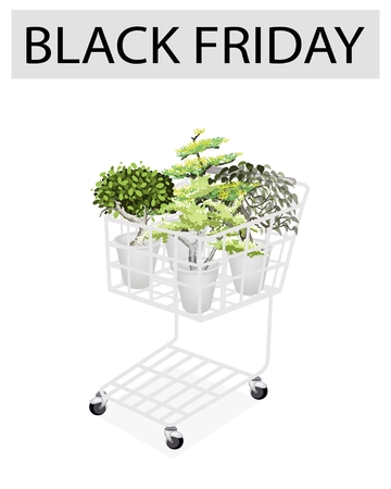 hedge trees: A Shopping Cart Full with Variety of Plants, Evergreens and Trees for Black Friday Shopping Season and Biggest Discount Promotion in A Year.