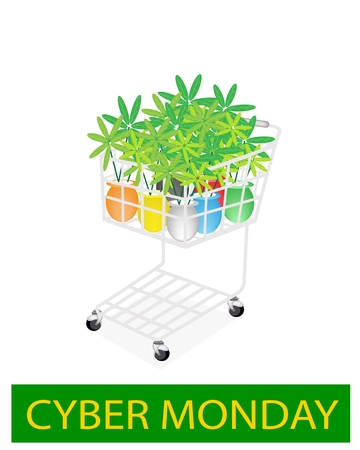 beautifu: A Shopping Cart Full with Various Colors of Beautifu Green Tree for Cyber Monday Shopping Season and Biggest Discount Promotion in A Year.