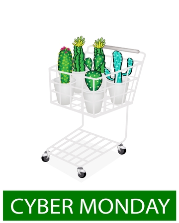 thorn bush: A Shopping Cart Full with Various Type of Cactus for Cyber Monday Shopping Season and Biggest Discount Promotion in A Year.  Illustration