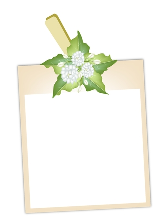 Illustration of Blank Instant Photo Print or Frame Hanging on White Jasmine Flowers with Green Leaves Clothespins, Copy Space for Text Decorated. Vector